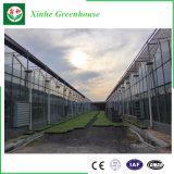 직류 전기를 통한 강철 구조물 커버 유리 온실