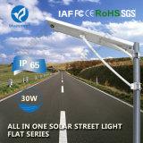 lámpara de calor accionada calle integrada solar al aire libre 30W
