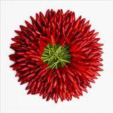Красный сушеный перец чили гранул (60-80)