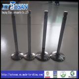 Einlass u. Exhaust Engine Valve für Sonate Hyundai-H100/Santro/Accent/Mighty/(ALL MODELS)
