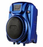 Professioneller beweglicher Lautsprecher mit Nachladen-Batterie Bluetooth (B1021)