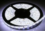 garantía impermeable flexible 3years de la tira los 60LED/M de 2835SMD LED