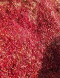 Roter Zerstampfung-Pfeffer/Paprika blättert von China ab