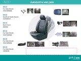 La sede automobilistica parte lo stampaggio ad iniezione di plastica dello stampaggio ad iniezione/dell'automobile (A0316007)