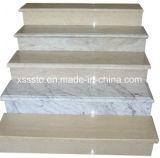 Строительных материалов из гранита каменными ступеньками лестницы шаги