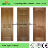 Pelle di legno del portello dell'impiallacciatura di disegno moderno della Camera/portello di legno
