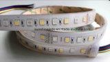 IP68 5 colori impermeabili RGB e striscia doppia di Ww&Pw LED di colore