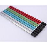 Qualitäts-metallische angestrichen Blacklead Hb-Bleistifte mit BAD Ende