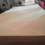 4*8 Size Poplar Core E0 Bb Cc Grau Okoume Cola face e dorso compensado de madeira comercial