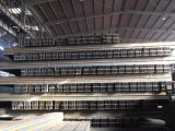 Segnale d'acciaio laminato a caldo di alta qualità per costruzione