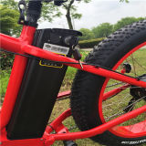 48V 500W Sable Fat Tire électrique Mountain Bike pour Lady