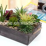 La decoración del hogar de madera rústica Caja de la sembradora con asas de cuerda
