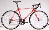 ARC 83, Roadbike, alliage. 22sp