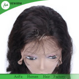 Jungfrau-brasilianisches Menschenhaar-frontale Spitze-Perücke 100%