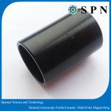 Magnete di anello permanente sinterizzato del motore di NdFeB BLDC