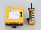 La gru universale Radio Remote dell'elevatore IP65 gestisce F21-6D