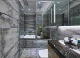 浴室(JINBO。)のための曇らされたガラス