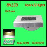 Fq-753 Lamp van de Inductie van de Sensor van de zonneMacht de Draagbare, het LEIDENE Licht van de Tuin