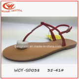 Sommer Popular Ladys Slipper Simple Design Sandals für Girls