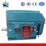 Motor elétrico assíncrono de alta voltagem de grande e média dimensão, de grande e médio alcance, série de eletroromotores do sistema elétrico Y / Yks / Ykk Center Heigth De 355mm-1000mm