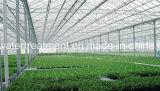 Strato ondulato traslucido del tetto della fibra di vetro della vetroresina di FRP/GRP