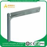 30W PIR 안전 벽 램프 옥외 LED 태양 가로등