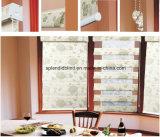 шторки окна ролика высокого качества 38mm (SGD-R-3365)