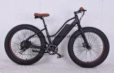 bici elettrica della gomma di 250W 36V della spiaggia grassa poco costosa della donna/bici elettrica Fatbike della neve