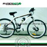 リチウム電池の電気バイク