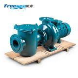 Pompe à eau matérielle de fer de moulage