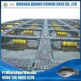 Проект фермы рыб группы клетки реки
