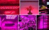 2017 90W-1000W 플랜트 LED는 플랜트를 위해 가볍게 증가한다 개선, 플랜트를 증가한다 3years 보장을%s 가진 Luminaire를 증가한다