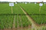 Мочевина высокого качества низкой цены для аграрной ранга