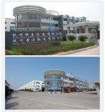 Soem/kundenspezifische Hangzhou-Blech-Herstellungs-Industrie in China