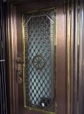 Цвет новой конструкции из нержавеющей стали для двери вилла или апартаменты (S-3035)