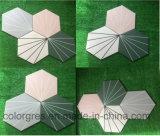 azulejo polar de Wall&Floor de la porcelana del rayo del hexágono de 200*230m m