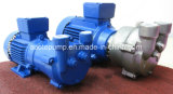 2BV Flüssigkeit (Wasser) Ring-Vakuumpumpe