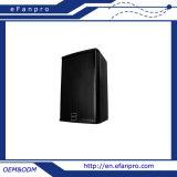 Ex10 PRO Audio Professionele Audio 10 '' - Tact