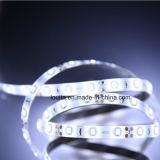 lámpara de la tira de la tira 2835 2700k LED del 14.4W/M 60LED SMD2835 LED