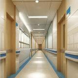 Barandillas protectoras montadas en la pared de Crashproof para el pasillo del hospital