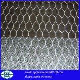 Dirrectlyの工場価格の電流を通された六角形の金網