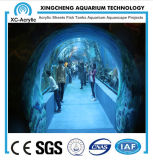 Precio de acrílico material de acrílico claro modificado para requisitos particulares del proyecto del mundo del mar
