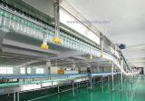 Línea de embotellamiento aire que transporta el sistema (transportador del aire)