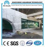 El tanque de pescados de acrílico claro del acuario de precio submarino del proyecto del mundo