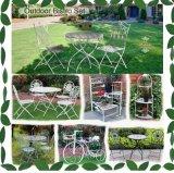 Tabela e cadeiras ajustadas dos restaurantes do metal do jardim