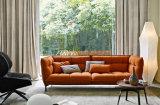 Sofá moderno novo da tela da mobília de Hoem para a sala de visitas do hotel (HC085)
