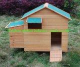 Le poulet Coop (QZC8084)