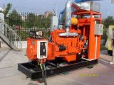 100 квт-300 квт природного газа для генераторных установок