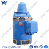 Асинхронный двигатель Пол-Вала серии Vhs (b) вертикальный для вертикального насоса турбины (WP-1)