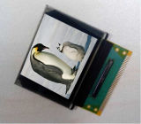 модуль индикации 1.3-Inch OLED, 128*64p, Monochrome белое или голубо